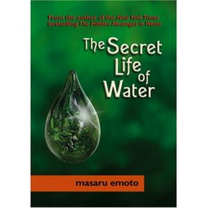 The Secret Life of Water Book