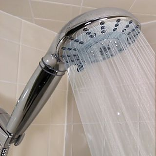RainMaker 7-Spray Shower Filter with Facial Mister