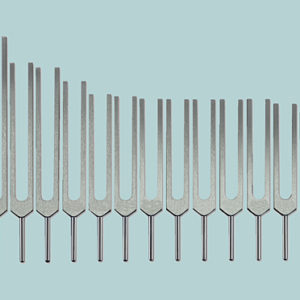 Human Organ Tuning Fork Set