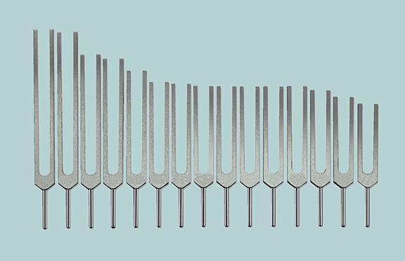 Human Organ Tuning Fork Set